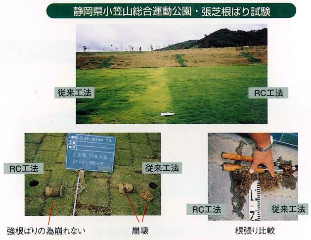 ターフグランド 張芝根引張試験写真1